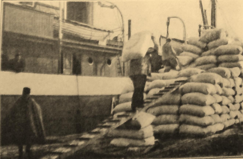 Calais 14 18 dechargement de laine